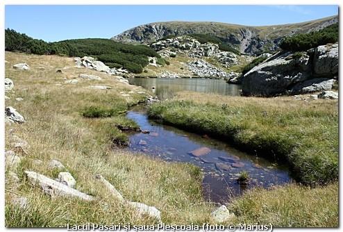 Lacul Păsări şi şaua Pleşcoaia, foto Marius