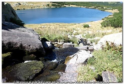 Câlcescu şi pârâul care se scurge din Vidal, foto Marius