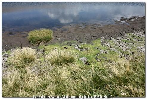 Lacul din şaua Ciobanului, foto Marius
