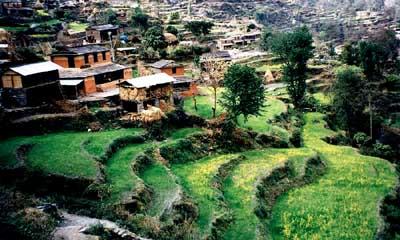 Pe valea lui Ghar Khola, foto Marius